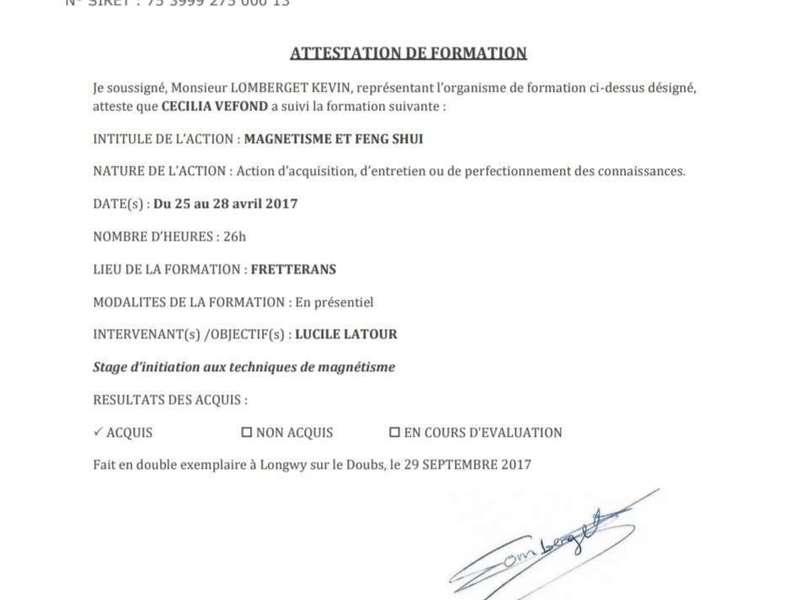 attestation_de_formation_magnetisme_et_feng_shui20200305-3954981-1m56sg7