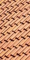 Toutain Abraham, Entretien / nettoyage de toiture à La Séguinière