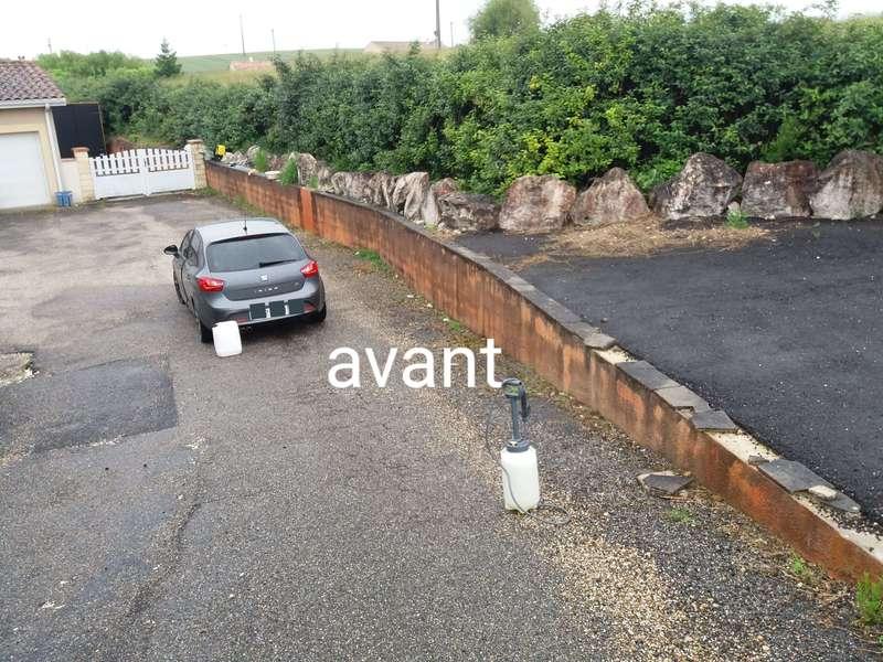 avant_1