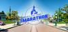 team sport santé au semi marathon de disneyland paris, ostéopathe, diététicienne, podologue