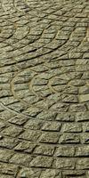 CONCEPT CERAMIC, Revêtements au sol à Jaunay-Clan