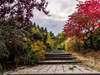 ENT Delange.R, jardinier à Gaillon (27600)