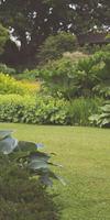 Jardinier Par Nature, Entretien de jardin à Nogent-le-Rotrou