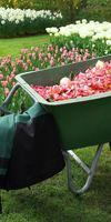 Jardinier Par Nature, Jardinage à La Ferté-Bernard