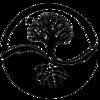Logo Rui Gonçalves