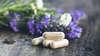 Prendre rendez-vous avec le homeopathe - Praticien en médecine quantique Bousquet