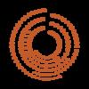 cv consilium accompagnement digital