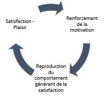 schéma principes fondamentaux de la sophrologie