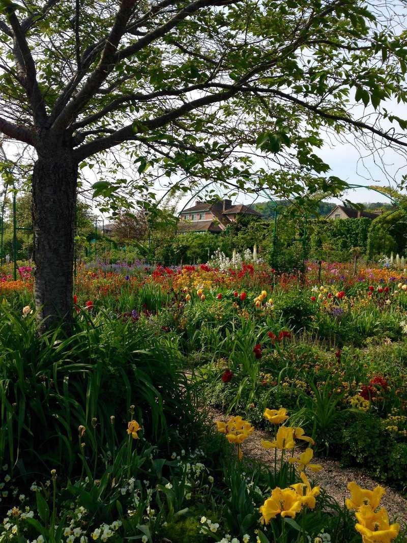 Fondation Claude Monet, Giverny, France (2013).