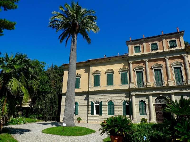 Botanical Garden and Museum, Pisa, Italy (2015).