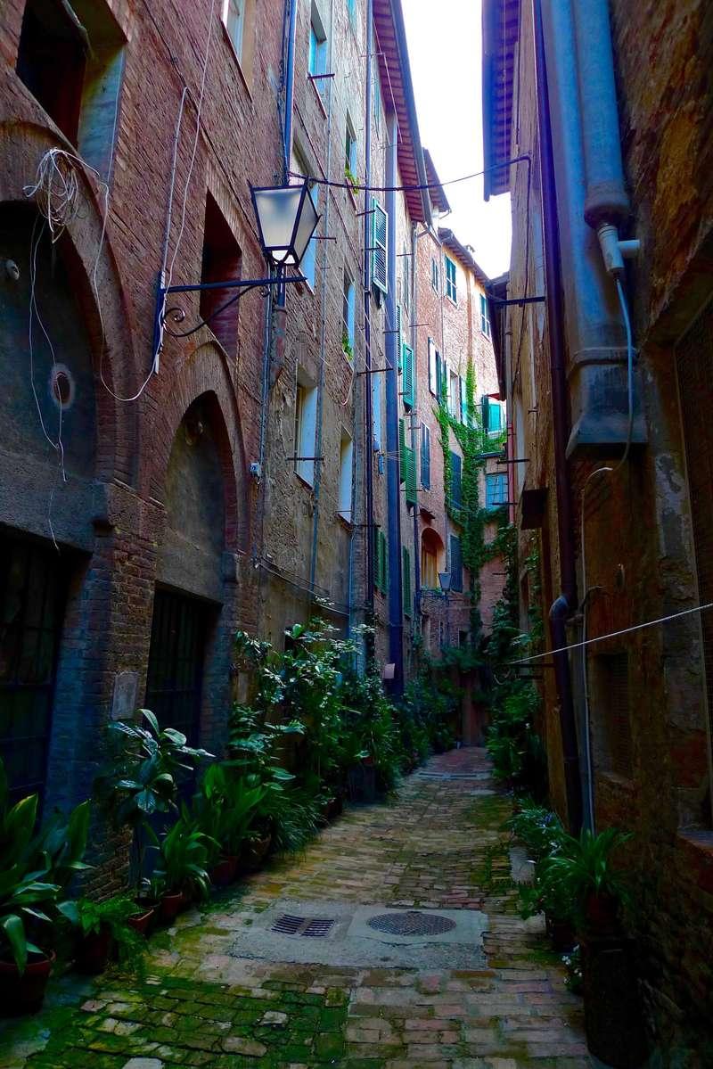 Sienna, Italy (2015).