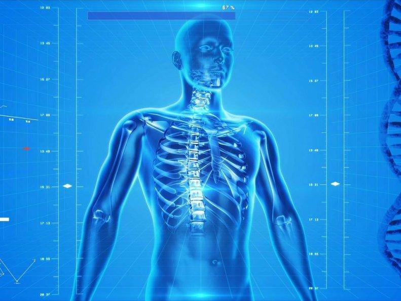 L'ostéopathie cherche à définir les restrictions de mobilité qui affectent le corps humain