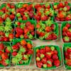 Jardin Maraicher (vente de fleurs et légumes de saison)