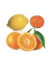 Hypnose citrus bliss 2