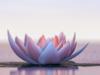 Image de lotus : Sophrologie à Aix en provence