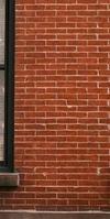 sas BBTK Berland, Installation de fenêtres à Chevigny-Saint-Sauveur