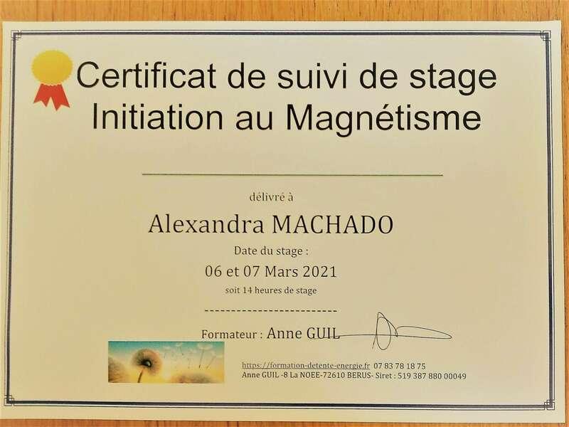 certificat_magnetisme_niveau_120210625-2217130-1p8evc