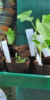 C.M Espace Vert, Entretien d'espaces verts à Grabels