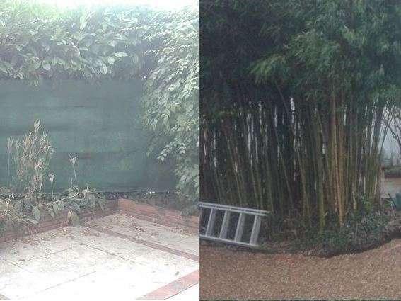 Mise en place d'une palissade bois en limite de propriété avec le voisin