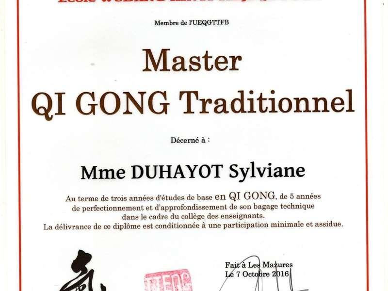 master_qi-gong_iteqg03520200420-1330253-mqyglm