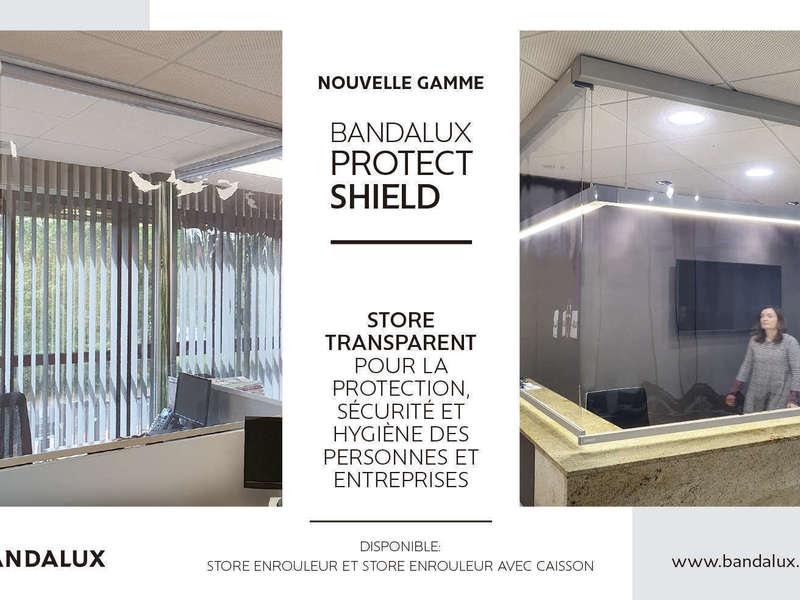 shield20200827-4038127-31a2le