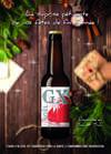 Poster GX Noël