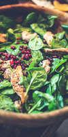 Carine Floureux, Diététicienne nutritionniste à Saverdun