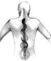 ostéothérapie paris 15ème