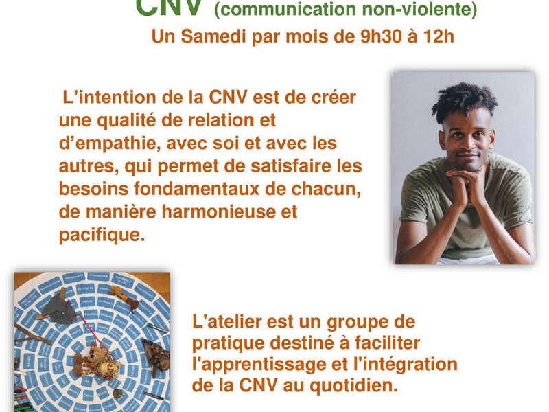 cnv-mathieu_-_copie