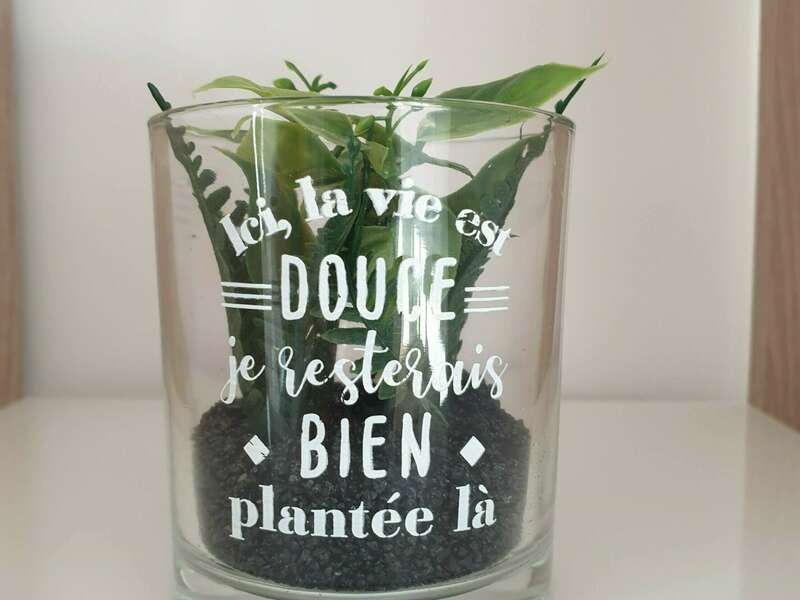plante_la_vie_est_douce_je_resterais_bien_plantee_la