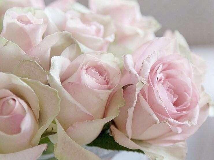 gite_de_charme_la_maisond_d_eugenie_st_amand_les_eaux_fleurs_1