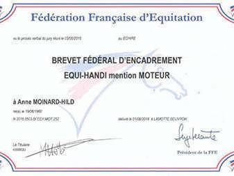 diplome-brevet-federal-1