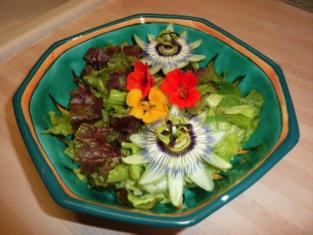 Salade composée aux fleurs du jardin