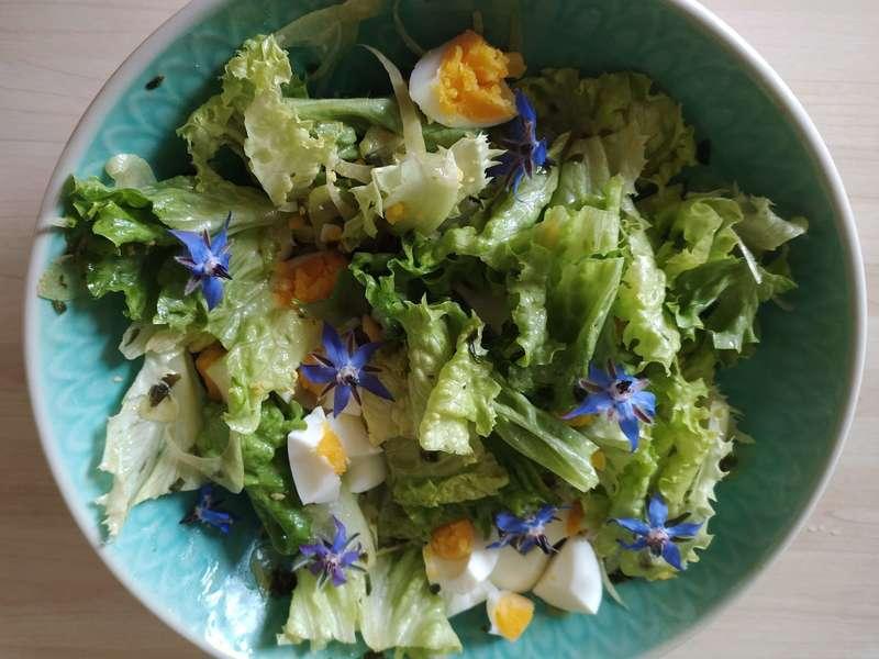 Salade  printanière fleurie