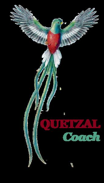 logo quetzal coach