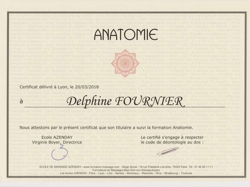 d2-massage-certificat_formation_anatomie_00120190729-2331294-y2sgf1