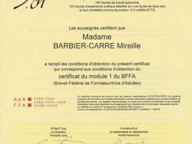 certificat_fsea_formatrice_d_adultes20190314-2465115-tkwqpm