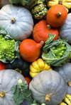 légumes draineurs après les fêtes de fin d'année