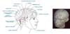 Méthode access consciousness