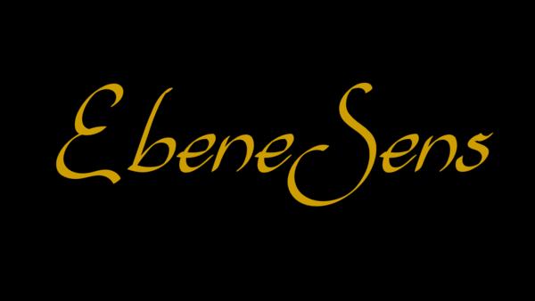 Logo noir ebenesens simplebo aout 2020