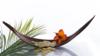 , massages bein-être et énergétique à Orsay