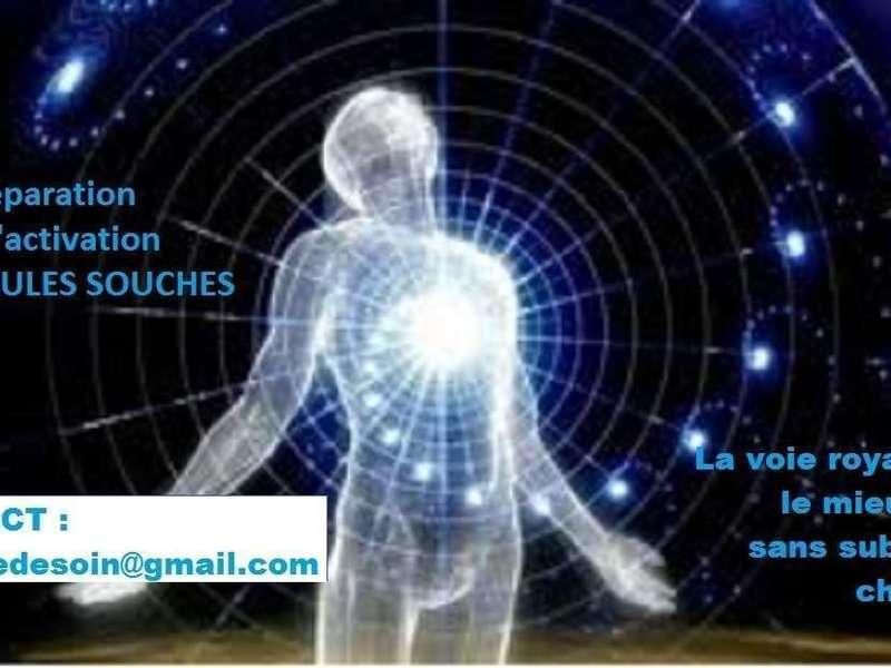 regeneration_avec_contact_redimensionne