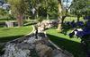 Réalisations de la SARL NATURE ET CREATION, jardinier paysagiste à Vihiers (49310)