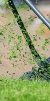 SARL NATURE ET CREATION, Entretien de jardin à Bressuire
