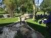 SARL NATURE ET CREATION, jardinier-paysagiste à Vihiers (49310) / Création d'espaces verts