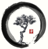 , médecine traditionnelle japonaise à Lyon (69008)