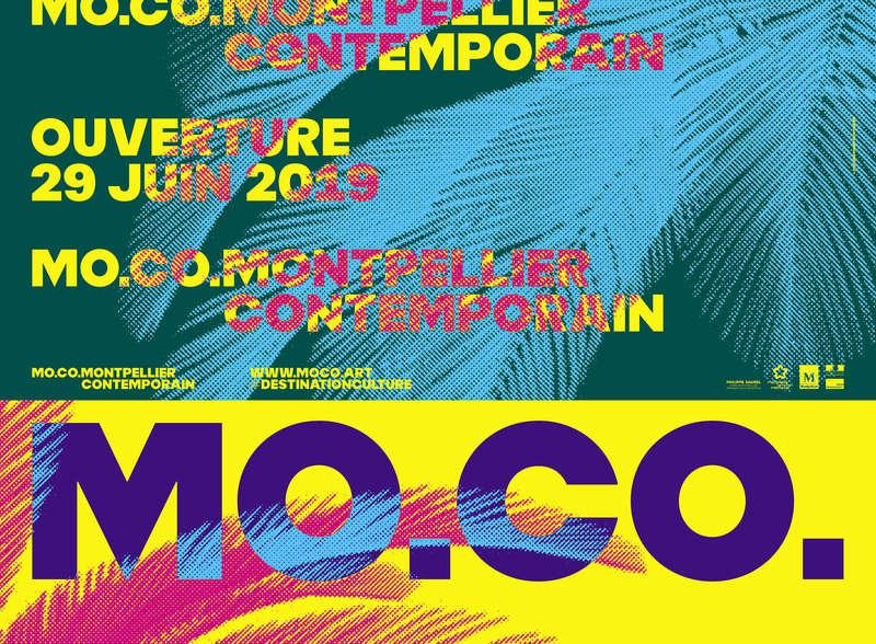 33_moco-ouverture