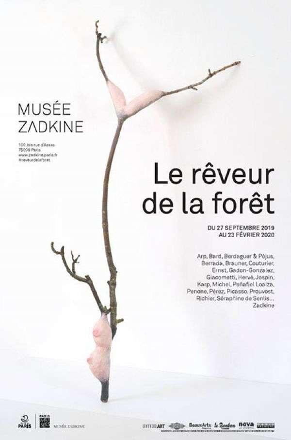le_reveur_de_la_foret