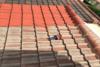 Stahl Rénovation, entretien / nettoyage de toiture à Virsac (33240)