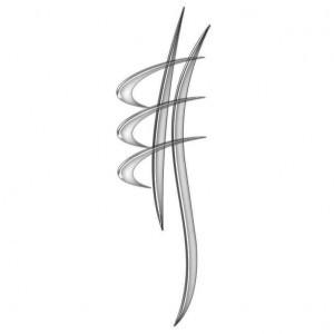 Logo afc 300x300